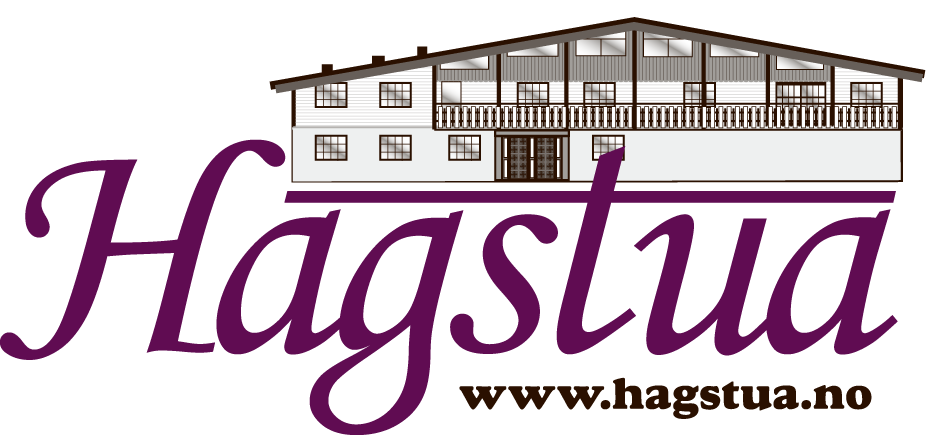 Hotel Management Software Clients - Hagstua